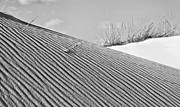 Sand Dunes Prints - Mergers BW Print by JC Findley