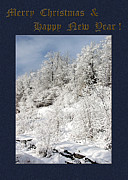Photography By Govan; Vertical Format Prints - Merry Christmas and Happy New Year Photo Greeting Card  Print by Andrew Govan Dantzler