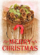 Pine Cones Posters - Merry Christmas Barrel Poster by Cristophers Dream Artistry