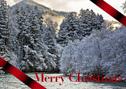 Snow-covered Landscape Digital Art Posters - Merry Christmas Card Poster by Belinda Greb