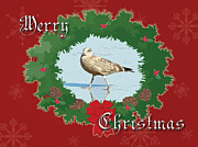 Mother Nature Photos - Merry Christmas Greeting Card - Young Seagull by Mother Nature