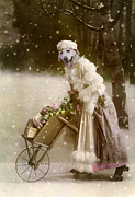Snow Dog Pyrography Posters - Merry Christmas Poster by Martine Roch