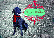 Black Lab Mixed Media - Merry Christmas by Mindy Bench