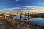 Amazing Jules - Merton E. Sayles Bridge