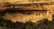 Cliff Dwellers Framed Prints - Mesa Verde Home Of The Ancients Framed Print by Bob Christopher