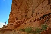 Adam Jewell - Mesa Verde Long House