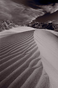 Sand Dunes Photo Originals - Mesquite Dunes Death Valley B W by Steve Gadomski