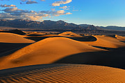 Sunrise Pyrography Posters - Mesquite Sand Dunes Death Valley Poster by Peter Dang