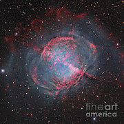 Starfield Posters - Messier 27, The Dumbbell Nebula Poster by Robert Gendler