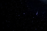 Stars And Planets Photos - Meteors Lyrid Meteor Shower by Thomas R Fletcher