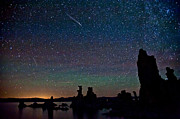 Perseid Metal Prints - Meteors over Mono Lake Metal Print by Cat Connor