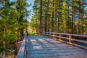 Owfotografik Photo Prints - Methow Valley Community Trail at Wolf Creek Bridge Print by Omaste Witkowski