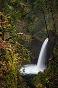 Brian Bonham - Metlako Falls