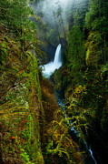 Lush Photos - Metlako Falls by Darren  White