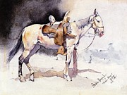 REPRODUCTION - Mexican Pony
