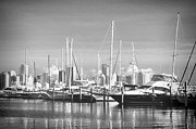 White River Scene Framed Prints - Miami Marina in Black and White Framed Print by Rudy Umans