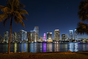 Miami Skyline Art - Miami Skyline by Domenik Studer