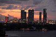 Miami Digital Art Posters - Miami Skyline Poster by S C
