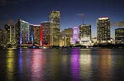 Miami Heat Prints - Miami Skyline two  Print by Frank Molina
