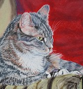 Pillow Pastels Posters - Michaels Cat Poster by Linda Eversole