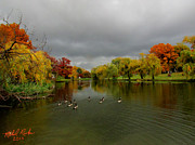 Creator Originals - Michigan Autumn by Michael Rucker