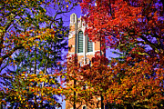 Msu Prints - Michigan State University Beaumont Tower Print by John McGraw