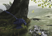 Tree Creature Posters - Microraptor Gui Eating A Small Fish Poster by Emily Willoughby