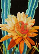 Cactus Paintings - Midnight Bloom by Carol Sabo