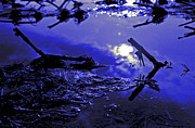 Moonlit Night Photos - Midnight Blue by Mike Flynn