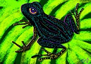 Nick Gustafson - Midnight Frog