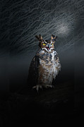 Owl Digital Art Metal Prints - Midnight Guardian Metal Print by Renee Forth Fukumoto