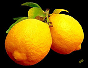 Citrus Digital Art Prints - Midnight Lemons Print by Ben and Raisa Gertsberg
