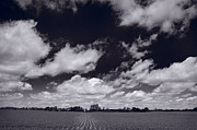 Field. Cloud Prints - Midwest Corn Field BW Print by Steve Gadomski
