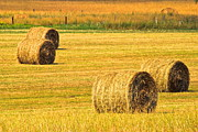 Haybale Art - Midwest Farming by Robert Harmon
