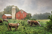 Barn Digital Art Prints - Mifflintown Farm Print by Lori Deiter