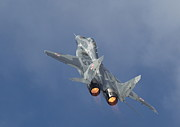 Fighter Aircraft Prints - Mig29 - Fulcrum Print by Pat Speirs