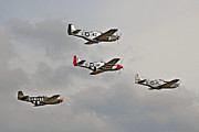 Classic Mustang Framed Prints - Mighty 8th P51 Mustangs  Framed Print by Pat Speirs