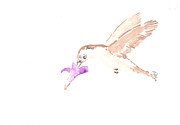 Migrating Birds Originals - Migrating Hummingbird by Bernadette Crotty