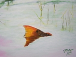 Sports Paintings - Mikes Redfish by Georgie McNeese