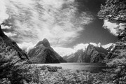 Infrared Photos - Milford Sound Fiordland I by Colin and Linda McKie