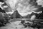Monochrome Prints - Milford Sound Fiordland II Print by Colin and Linda McKie