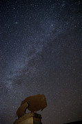 Bison Photos Posters - Milky Way  Poster by Melany Sarafis