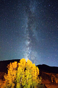 Milkyway Prints - Milky Way October Sky Print by James Bo Insogna
