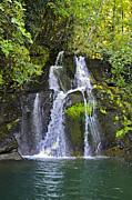 Susan Leggett - Mill Creek Falls