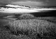 Frank Winters - Mill Creek