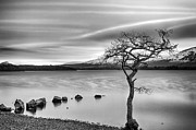 Scotland Art - Millarochy Bay Loch Lomond  by John Farnan