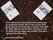 Local Food Posters - Millennium Seed Bank Partnership Poster by Jon Simmons