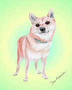 Animal Shelter Drawings - Millie - a former shelter sweetie by Dave Anderson