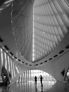 Art Museum Photo Prints - Milwaukee Art Museum Print by David Bearden