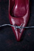 Barbwire Photos - Mind Your Steps by Joana Kruse